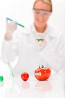 Genetic engineering _ scientist in laboratory, GMO testing experiment