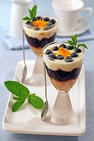 Cup with yogurt, orange and blueberries