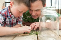 Father and son look through the contents of a bug jar.