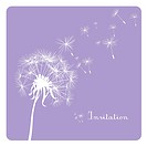 card with dandelion on pastel background
