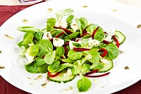 Fresh salad in white plate decorated with olive oil dressing.