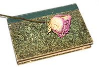 dry red rose on ancient green book