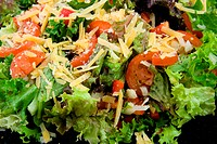 Fresh salad with tomatoes and cheese in closeup
