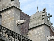 Pig gargoyle on cathedral in Autun