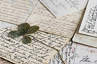 Clover leave on old letters