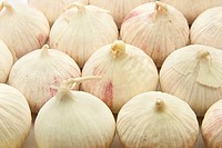 Close up of group of garlic bulbs