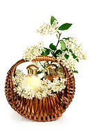 Spa composition in basket with branch of bird cherry on a white background