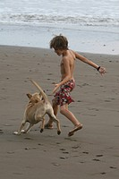 boy playing with his dog on the beach. dog chases the boy