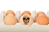 Skull, eggs, symbolic image for contaminated food, dioxin, animal feed scandal