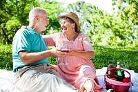 Romantic senior couple giving a toast on an outdoor picnic.