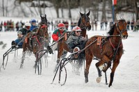 Traber show driving at the horse_sleigh race in Parsberg, Upper Bavaria, Bavaria, Germany, Europe