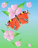 an illustration of a peacock butterfly inachis io with open wings on pink mallow flowers under a blue sky in eps 10 format with gradients