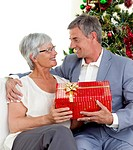 Senior man giving a Christmas present to his wife at home