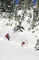 Colorado. Irwin. Backcountry Skiing & Snowboarding.