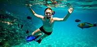 Snorkeler. Red sea
