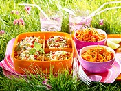 Picnic with grated carrots and tabbouleh