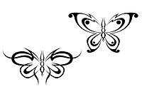 Isolated butterfly tattoos in tribal style on white background
