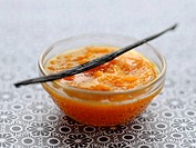 Vanilla_flavored pumpkin puree