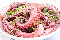 Grilled octopus with herbs as closeup on a white plate