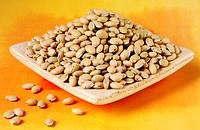 Val Beans / Hyacinth Beans