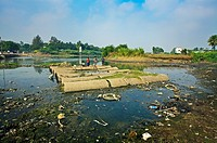 Polluted river, Chennai, Tamil Nadu, India.