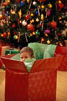 Toddler Boy Hiding in Christmas Box