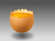 The image shows an illustration of an opend egg