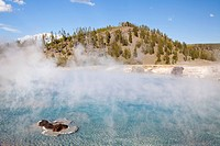 Excelsior geyser pool at yellowstone national park