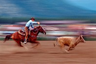 Blur of Cowboy Roping Calf