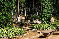 Parque da Luz, nature, plants, Capital, São Paulo, Brazil