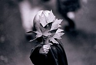 Child Holding Maple Leaves
