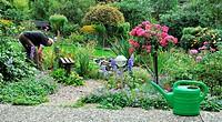 Gärtner pflegt die Blumen und Sträucher im Garten