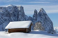 Santner peak, Plattkofel Alm, UNESCO world natural heritage, Seiser Alm, Valle Isarco, South Tyrol, Trentino_Alto Adige, Italy