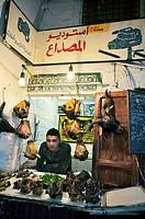Shop selling goat heads, Tetouan  Rif region, Morocco.
