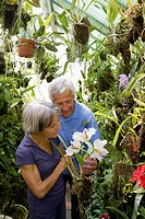 Germany, Bavaria, Senior couple gardening in glass house