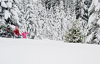 Austria, Salzburg County, Boy and girl walking through snow and watching christmas tree