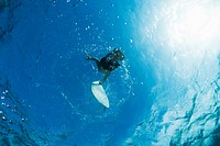 swimmer reaching for surfboard underwater