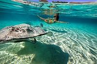 woman swimming with stingrays underwater