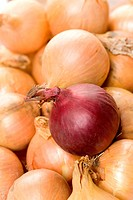 Detail of red onion amongst brown onions
