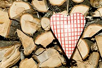 Checkered heart hanging on logs