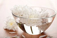 white flowers floating in bowl. spa background