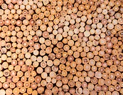 wood logs background
