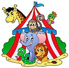 Various animals in circus tent _ picture illustration.