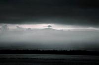 Mist and Moors