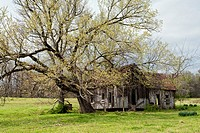 Abandoned house in a field, Arkansas, USA