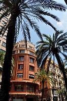Valencia, Spain: buildings and palms along Calle de las Barcas