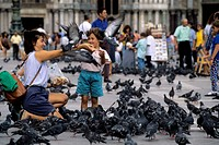 Italy, Venice, San Marco Quarter, St, Mark´s Square, St. Mark´s cathedral, Tourists feeding pigeons