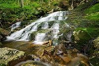 A tributary of Walker Brook in Woodstock, New Hampshire USA during the spring months