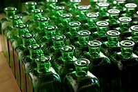 perspective of numerous bottles of green glass