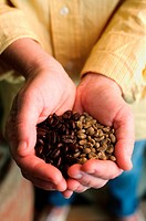Cupped hands holding coffee beans